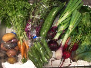 無農薬野菜、届きました!